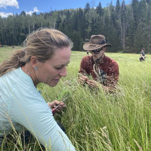 Students forage for survival food in meadow